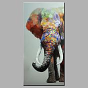 Pintada a mano Animal Pop Vertical,Modern Un Panel Pintura al óleo pintada a colgar For Decoración hogareña