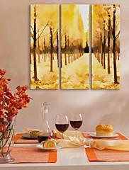 e-HOME® plátně umění žlutá dřevo dekorativní malba sadu 3