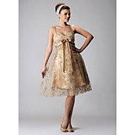 Cocktail Party / Prom / Holiday Dress - Champagne Plus Sizes / Petite A-line / Princess Sweetheart / Spaghetti Straps Knee-length Lace
