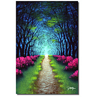 Printed Canvas Art Pathway Through Paradise by Jon Rattenbury with Strethed Frame