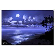Painettu Canvas Art Moonlight Dream Jon Rattenbury kanssa Strethed Frame