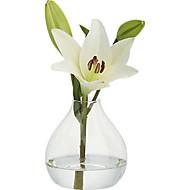 Table maîtresses simples deocrations de table de vase en verre transparent