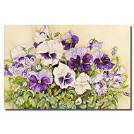 Stretched Canvas Art Floral White and Purple Pansies by Joanne Porter