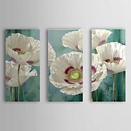 Ručno oslikana Cvjetni / Botanički Tri plohe Platno Hang oslikana uljanim bojama For Početna Dekoracija