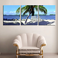 Stretched Canvas Art Landscape Blue Sea and Coconut Palm Set of 3