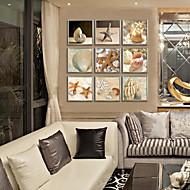Natureza Morta Quadros Emoldurados / Conjunto Emoldurado Wall Art,PVC Champanhe Sem Cartolina de Passepartout com frame Wall Art