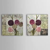 Trasferimenti su tela Botanica Art Dalie per Donna per colore Bakery Set di 2