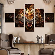 Stretched Canvas Art Animal Roar Set of 5