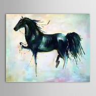 Ručně malované Zvíře olejomalby,Tradiční Jeden panel Plátno Hang-malované olejomalba For Home dekorace