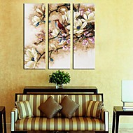 Stretched Canvas Art Flowers & Birds Set med 3