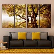 Reproducción en lienzo de arte sombras de los árboles en el conjunto de paisaje del lago de 4
