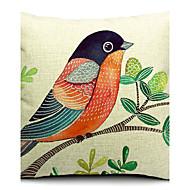piękny ptak bawełna / płótno pokrywa poduszki dekoracyjne