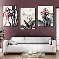 Canvastaulu art kukka koriste maalaus sarja 3