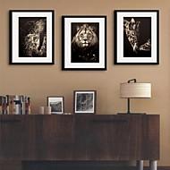 플로랄/보타니칼 프레임 캔버스 / 프레임 세트 벽 예술,PVC 블랙 매트 포함 프레임으로 벽 예술