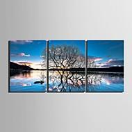 Canvas Set Landscape Floral/BotanicalThree Panels Vertical Print Wall Decor For Home Decoration