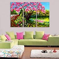 e-Home® venytetty kankaalle art puutarha sisustus maalaus sarja 3