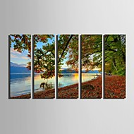 E-HOME® Stretched Canvas Art The Lake Scenery Decoration Painting  Set of  5