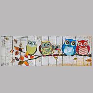 djur oljemålning handmålade väggkonst andra konstnärer handmålade olje paintingp338-1 redo att hänga