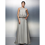 TS Couture® Prom / Formal Evening Dress - Silver Plus Sizes / Petite A-line Jewel Floor-length Chiffon