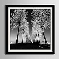 Τοπίο Καμβάς σε Κορνίζα / Σετ σε Κορνίζα Wall Art,PVC Μαύρο Περιλαμβάνεται Χάρτινο Φόντο με Πλαίσιο Wall Art