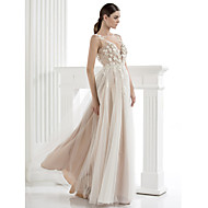 TS Couture Formal Evening Dress - A-line/Princess Scoop Floor-length Tulle