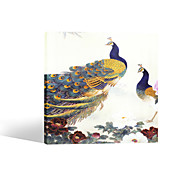 VISUAL STAR®Vintage Peacock Canvas Painting Animal Stretched Canvas Art Ready to Hang