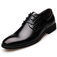 Oxfordky Černá / Hnědá Pánské boty Kůže Svatba / Kancelář / Party