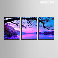 E-HOME® Stretched Canvas Art Scenery on The Lake Decoration Painting Set of 3
