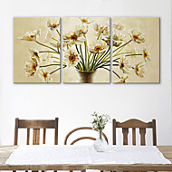 Stretched Canvas Art Flower A Warm Bloom Set of 3