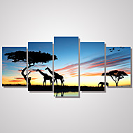 5 Panels African Landscape Giraffes and The Tree Picture Print on Canvas Unframed