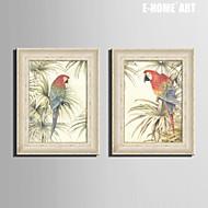 Djur Inramad duk / Inramat set 50cmX70cm(20inchx28inch)X1pcs Wall Art , PVC