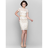 Lanting Sheath/Column Mother of the Bride Dress - Champagne Short/Mini Short Sleeve Lace