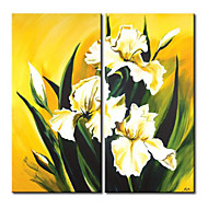 IARTS®2 Panels White Lilium brownii  Floral Oil Painting Framed White Flower Oil Painting