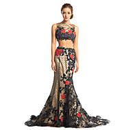 TS couture® 공식적인 저녁 드레스 - 아플리케와 두 조각 트럼펫 / 인어 BATEAU 청소 / 브러쉬 기차 얇은 명주 그물