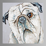 Abstract Dog Canvas Print Form Ready to Hang