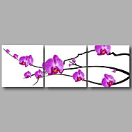 Ready to Hang Stretched Canvas Print Three Panels Wall Art Home Deco Pink Orchid Modern