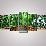 Estampados Fotográfico Paisagem Lazer Romântico Botânico Arquitetura Fotografia Viagem Modern,5 Painéis Horizontal Estampado Decoração de