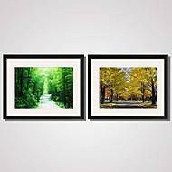 Paisagem / Floral/Botânico / Natureza Morta / Lazer Impressão de Arte Emoldurada / Quadros Emoldurados / Conjunto Emoldurado Wall Art,PVC