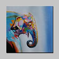 Handmade Modern Cartoon Elephant Animal Oil Painting On Canvas For Living Room Home Decor Wall Paintings Whit Frame