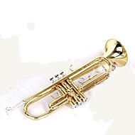Musik-Spielzeug Metall Gold Freizeit Hobby Musik-Spielzeug
