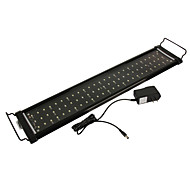 1pcs 10W LED Aquarium Light grow light LED Coral Reef Aquarium Lighting Lamp Offer fishes Light Bulb wholesale price