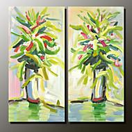 Ručně malované Zátiší Moderní,Dva panely Plátno Hang-malované olejomalba