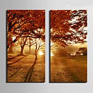 キャンバスセット 風景 欧風,2枚 キャンバス 縦長 版画 壁の装飾 For ホームデコレーション