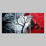 Handgeschilderde Abstract Olie schilderijen,Traditioneel Drie panelen Canvas Hang-geschilderd olieverfschilderij For Huisdecoratie