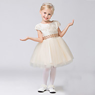 A-line Short / Mini Flower Girl Dress - Tulle Short Sleeve Jewel with Appliques / Beading