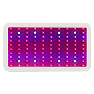 Newest designed Full Spectrum 300W  Led Grow Light for Hydroponic indoor Medical plant commercial cultivation