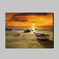 Hand-Painted Landscape / Fantasy 100% Hang-Painted Oil Painting,Classic / Modern One Panel Canvas Oil Painting For Home Decoration