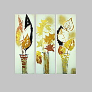 פרחוניים / ציור שמן מודרני בוטני, שלושה לוחות בד מצויר ביד