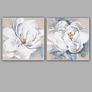 Ručně malované Abstraktní / Květinový/Botanický motiv olejomalby,Moderní / Klasický Dva panely Plátno Hang-malované olejomalba For Home
