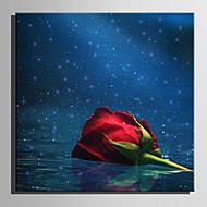 Картины с LED подсветкой Пейзаж Цветочные мотивы/ботанический Modern Европейский стиль,1 панель Холст Квадратная Печать ИскусствоДекор